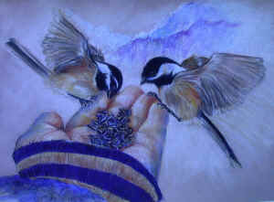 Click on the chickadee drawing to zoom in
